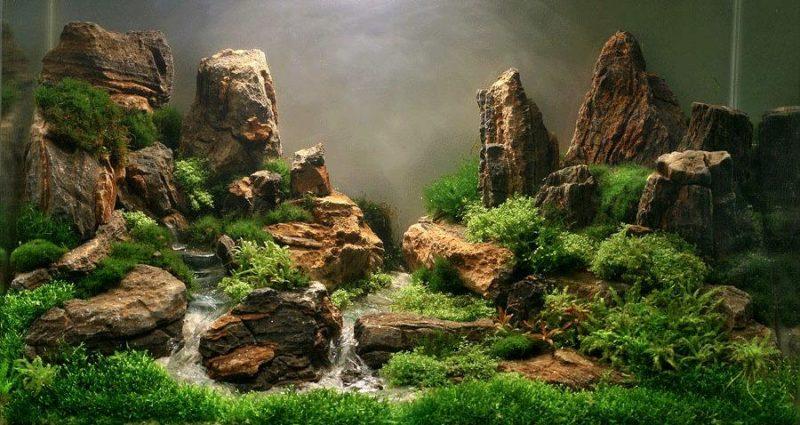 «Композиция из камней в аквариуме» фото - 8 800x425
