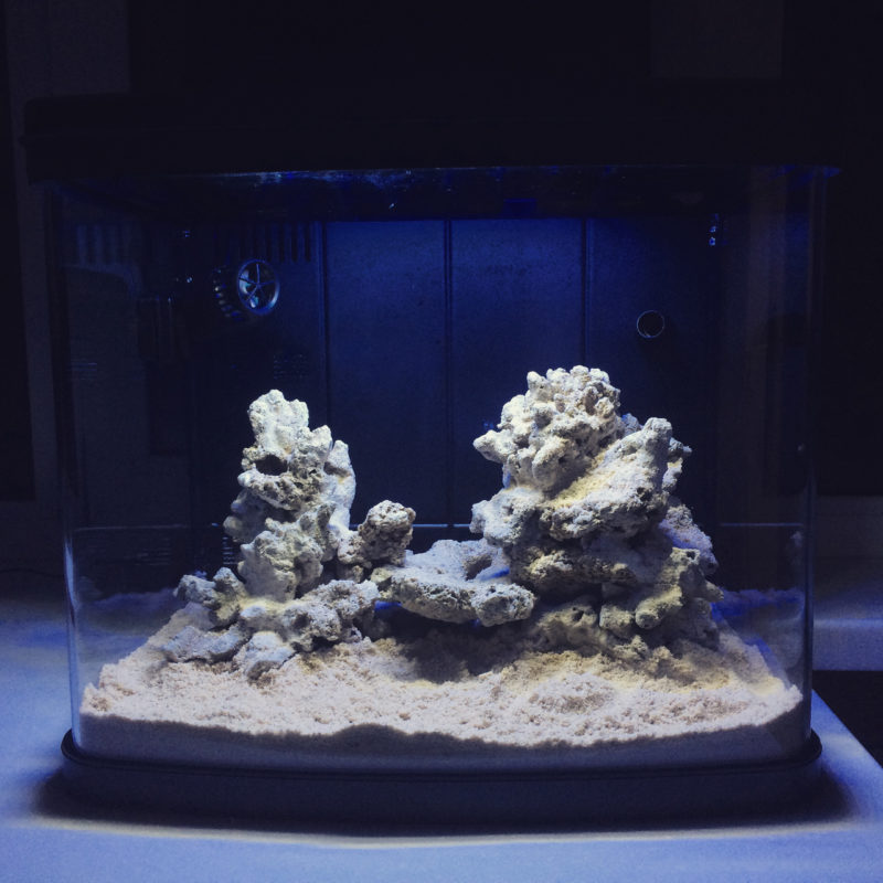 «Композиция из камней в аквариуме» фото - 9 1 800x800