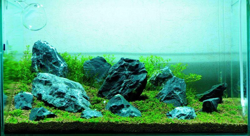 «Композиция из камней в аквариуме» фото - 9 800x437
