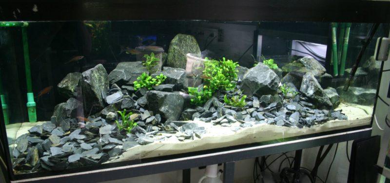 «Композиция из камней в аквариуме» фото - bazalt 800x376