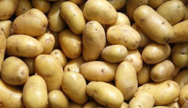 «ТОП-10 лучших сортов картофеля» фото - 1297348