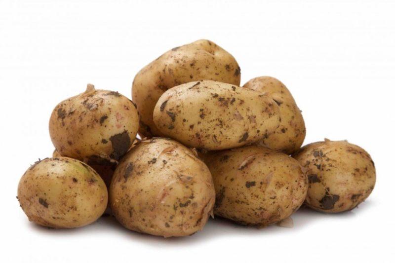 «ТОП-10 лучших сортов картофеля» фото - 138.970 800x533