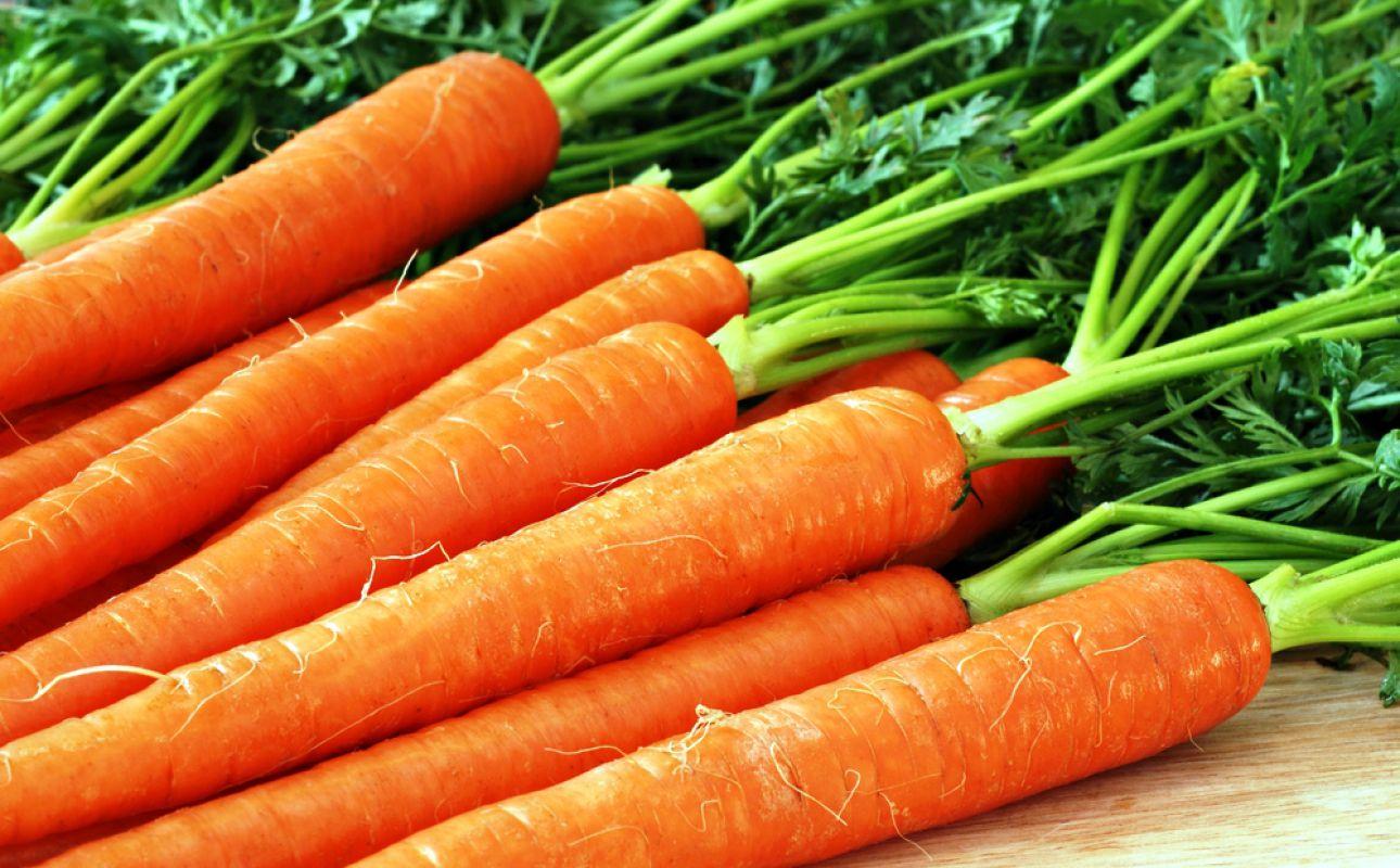 «Как необходимо хранить морковь зимой?» фото - 2582