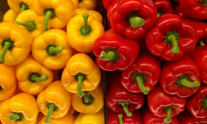 «Выращивание перца в теплице» фото - 796775