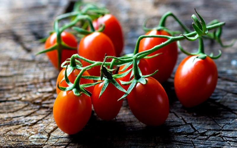 «Лучшие сорта помидор - фото и описание» фото - Vegetables Tomatoes 493818 1680x1050 800x500