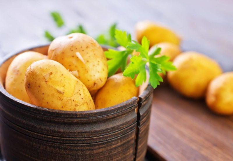 «ТОП-10 лучших сортов картофеля» фото - cropped  sajt 2 800x551