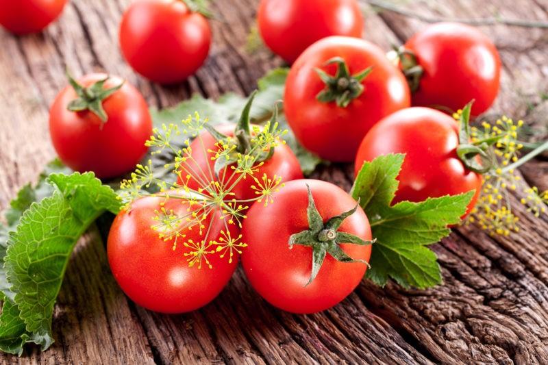 «Лучшие сорта помидор - фото и описание» фото - f06c43638d5e49b8a2df3a6437d27826 800x533