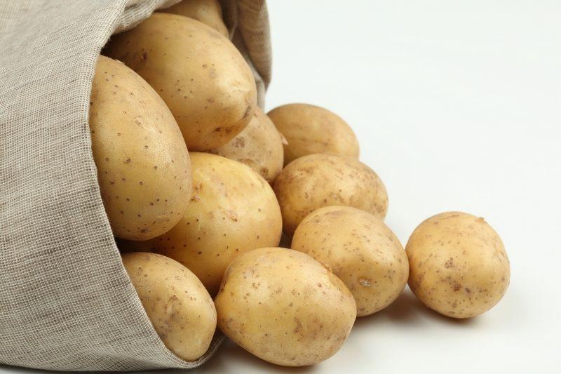 «ТОП-10 лучших сортов картофеля» фото - kartofel 800dpi 800x533