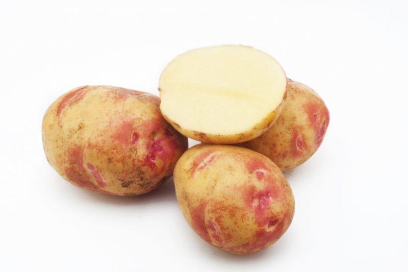 «ТОП-10 лучших сортов картофеля» фото - pikasso 800x533