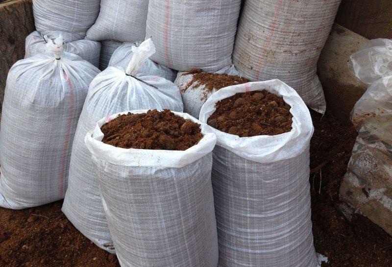 «Использование конского навоза как удобрение» фото - 1 4 800x545