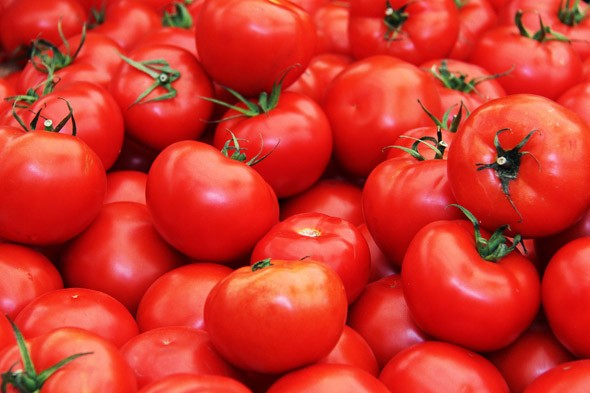 «Томат красным красно f1» фото - be1592d76705dbff2401d33241553b3e