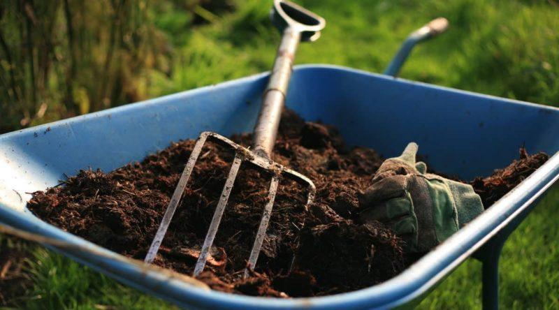 «Подкормка малины осенью минеральными удобрениями» фото - fullsize 800x444