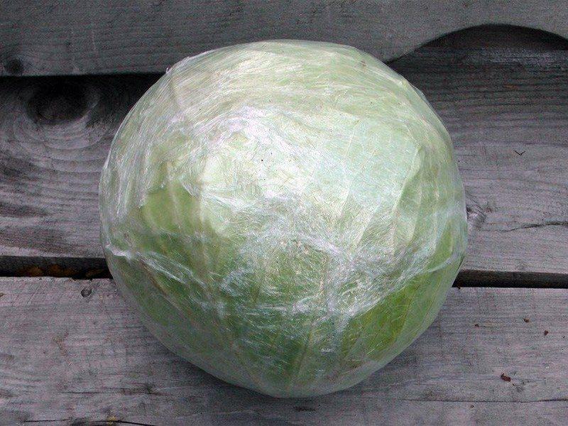 «Как хранить капусту в домашний условиях зимой?» фото - kak soxranit zimoj kapustu 5 800x600