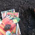 «Когда сажать морковь под зиму?» фото - morkov1 120x120