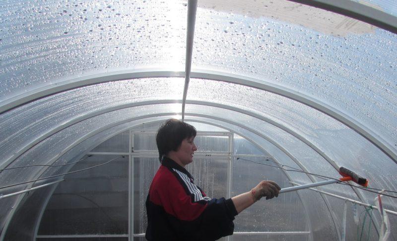 «Чем обработать теплицу из поликарбоната осенью?» фото - post 5bb188a534f29 800x487