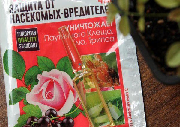 «Фитоверм для комнатных растений» фото - 46 600x425