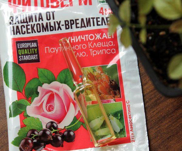 «Фитоверм для комнатных растений» фото - 46 600x500