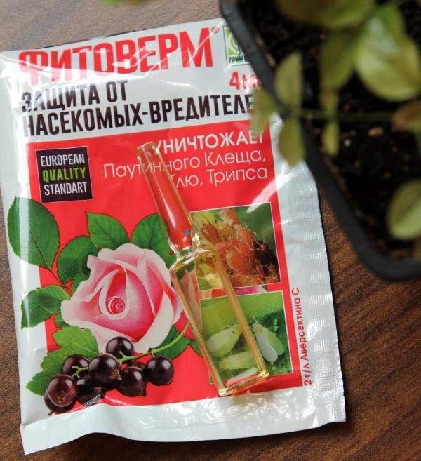 «Фитоверм для комнатных растений» фото - 46