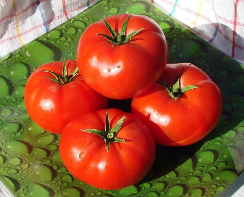 «Выращивание томатов в теплице из поликарбоната» фото - e834c1 800x648