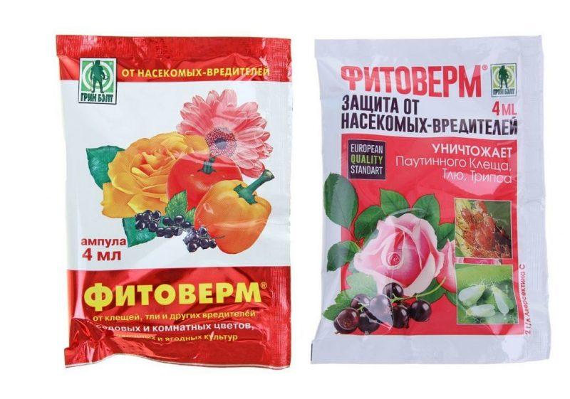 «Фитоверм для комнатных растений» фото - fitoverm6 1024x718 800x561