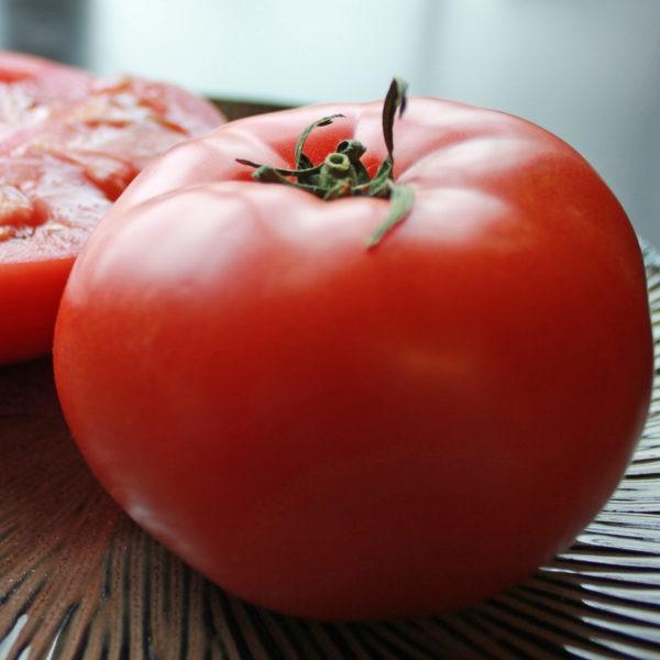 «Выращивание томатов в теплице из поликарбоната» фото - korol rannih e1518257365701