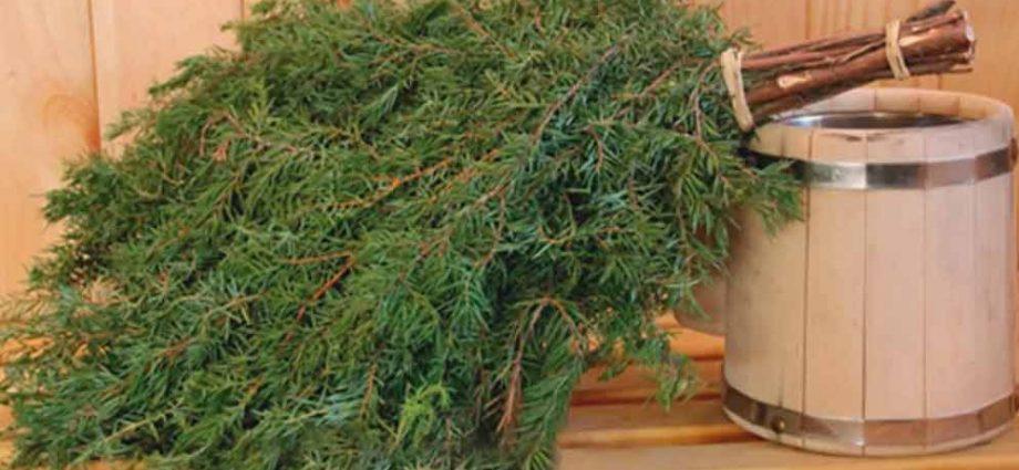 «Можжевеловый веник для бани: польза и вред. Как запаривать веник из можжевельника и париться им?» фото - mozhzhevelovyj venik 1 920x425