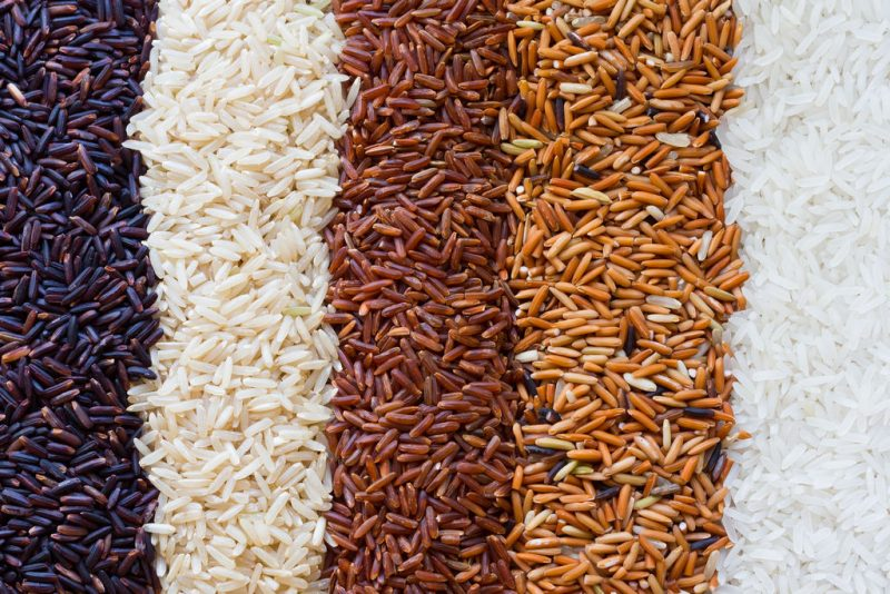 «Как растет рис?» фото - 1554295306 1554295332 800x534