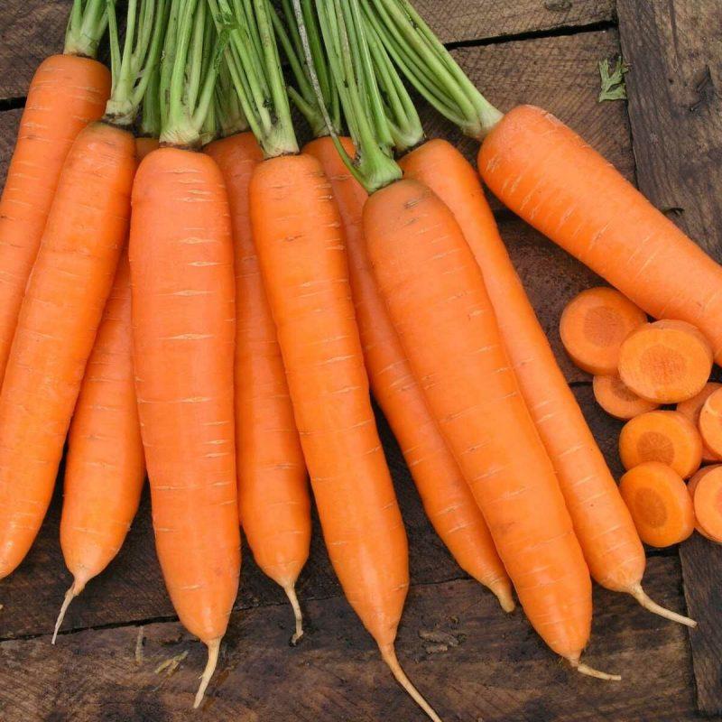 «Когда сажать морковь семенами в открытый грунт?» фото - sirkana f1 101985 26528068507711 800x800