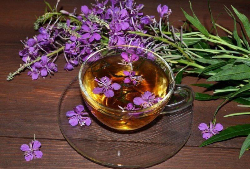 «Иван-чай - выращивание и полезные свойства» фото - ivan chaj pri ateroskleroze 04 800x542
