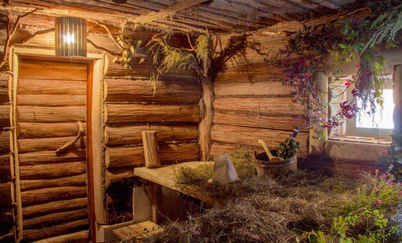 «Чем полезны травы для бани? Как сделать отвар для бани своими руками? Рецепты и рекомендации» фото - travy bani 2 800x484
