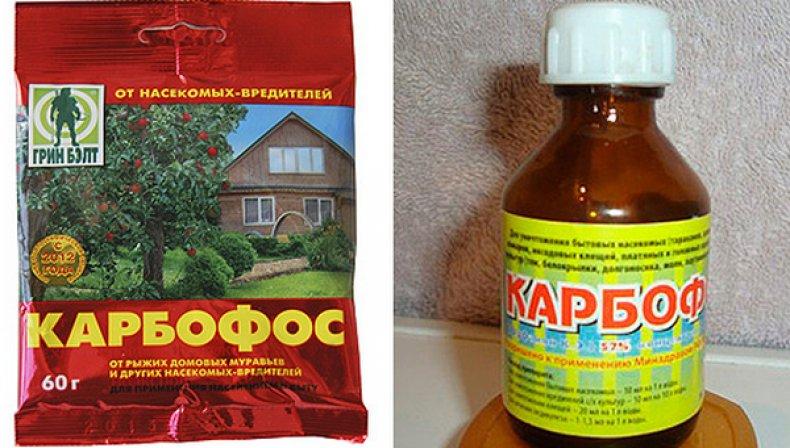 «Карбофос - применение и использование от вредителей» фото - 34506.or8lic.790