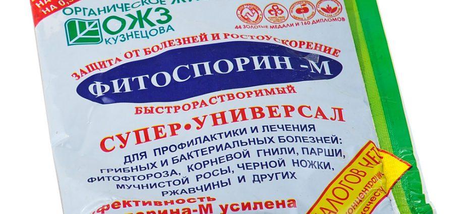 «Фитоспорин М - использование препарата» фото - biopreparat fitosporin m 100g 920x425