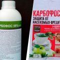 «Обработка сада осенью от болезней и вредителей» фото - sredstvo ot klopov karbofos 120x120