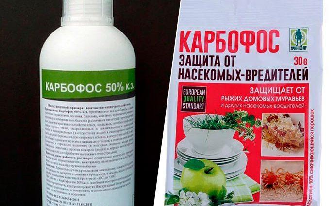 «Карбофос - применение и использование от вредителей» фото - sredstvo ot klopov karbofos 690x425