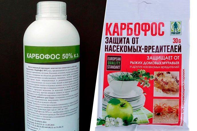 «Карбофос - применение и использование от вредителей» фото - sredstvo ot klopov karbofos 690x460