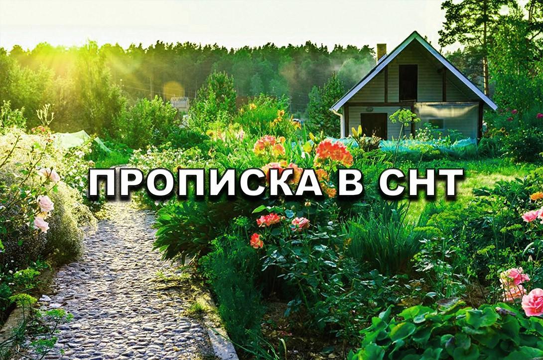 «Можно ли прописаться в СНТ» фото - Propiska v SNT Sai 774 t